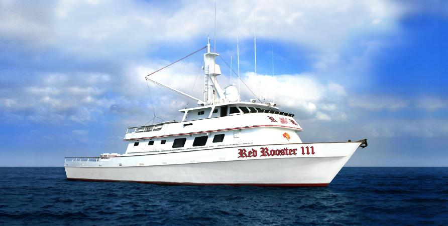 Red rooster 111 for San diego long range fishing
